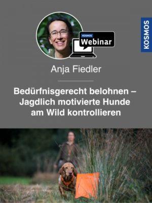 Buch Anja Fiedler - Bedürfnisgerecht belohnen - Jagdlich motivierte Hunde am Wild kontrollieren