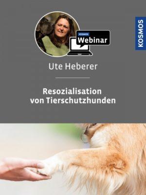 Buch Ute Heberer - Resozialisation von Tierschutzhunden