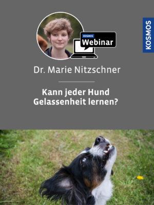 Buch Marie Nitzschner - Kann jeder Hund Gelassenheit lernen?