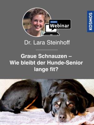 Buch Lara Steinhoff - Graue Schnauzen - Wie bleibt der Hund-Senior lange fit?