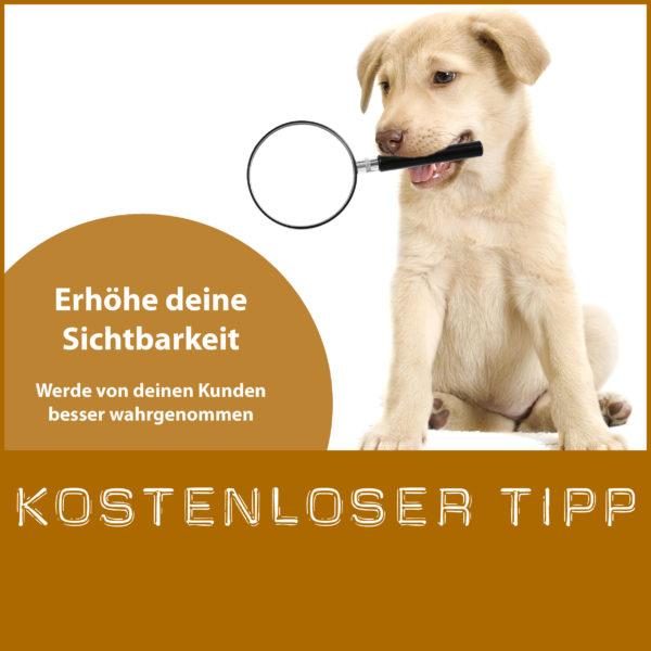 Kostenloser Tipp zur Erhöhung der Sichtbarkeit deiner Hundeschule